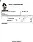 factura de catire cataratas 3 320 bs maskotas tc