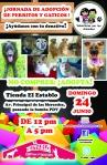 DOMINGO 24 DE JUNIO: JORNADA #29 DE ADOPCION DE PERRITOS Y GATICOS!!! AYUDANOS CON TU DONATIVO!!!