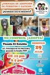 DOMINGO 29-JULIO: JORNADA #30 DE ADOPCION DE PERRITOS Y GATICOS!!! AYUDANOS CON TU DONATIVO!!! via @asoc_vpla
