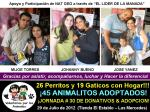 45 ANIMALITOS ADOPTADOS EL DOMINGO 29/07 EN NUESTRA JORNADA No. 30!!! via @asoc_vpla
