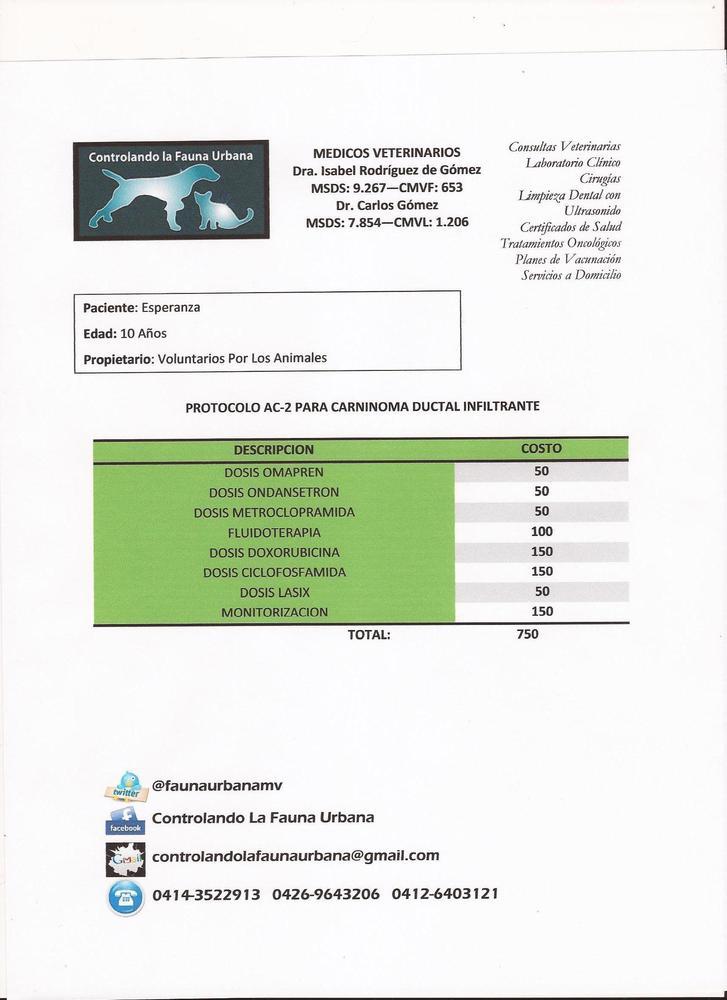 Protocolo_de_quimio_para_carci