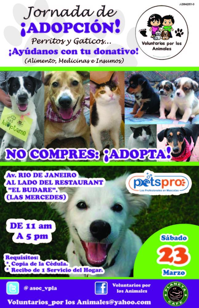 Jornada_de_adopcion_-_23mar13